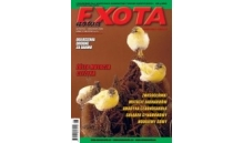 Nowa Exota Nr 6/2008