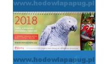 Kalendarz na biurko 2018