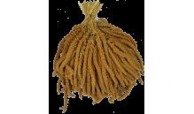 Proso w kłosach - żółte  1 kg - Węgry (685)