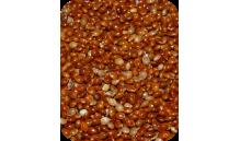 Proso czerwone 1 kg (236)