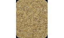 Ryż Paddy 1 kg
