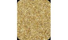 Proso senegalskie żółte 1 kg (240)