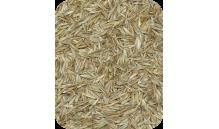Quiko - Nasiona trawy (trawa) 400 g