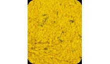 AllPet - Pokarm jajeczny wilgotny 1 kg