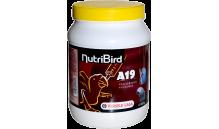 NutriBird - A19 - do karmienia ręcznego 800 g