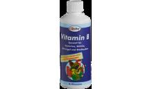 Quiko - Vitamin B 100 ml