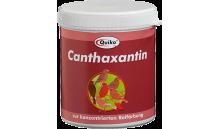 Quiko - Canthaxantin 100 g (barwnik czerwony)