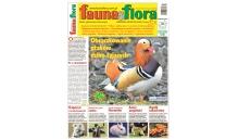 Fauna&Flora 8/2018 (Sierpień)