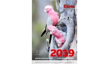 Kalendarz ścienny Exota 2019