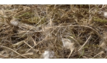 Kokos, sizal, juta, bawełna, mech - 40 g - Quiko