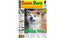 Fauna&flora - 08/2019 - (sierpień)