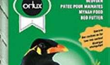 Orlux - Beo Patee  1 kg
