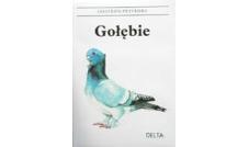 Gołębie - leksykon przyrody