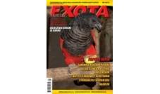 Nowa Exota Nr 4/2010