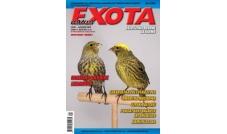 Nowa Exota Nr 4/2009
