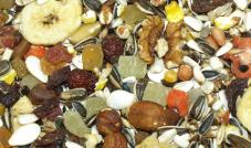 Versele Laga - Exotic Fruit Mix - pokarm z owocami 1kg