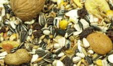 Versele-Laga - Nut Mix - pokarm z orzechami 1 kg (rozważany)