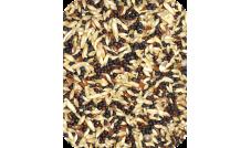 Deli Nature - 50 Kanarek Podstawowy 1 kg