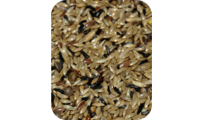 Deli Nature - 80 Kanarek Premium bez rzepiku 1 kg (Mozaika)