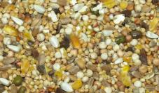 Deli Nature - 32 Mieszanka dla gołębi ozdobnych - krótkodziobych 1 kg
