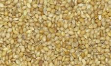Proso senegalskie żółte 1 kg