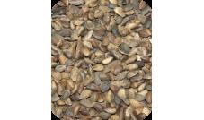 SOSNA (nasiona sosny) 500 g