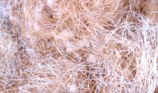 Kokos, sisal, juta, bawełna -  40 g