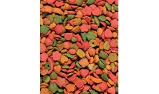Versele-Laga - NutriBird - P15 - Tropical 1kg (granulat) - rozważany