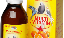 Quiko - Vitacombex V 125 ml(witaminy)