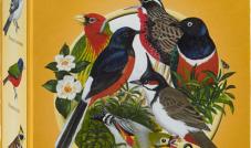 Quiko Goldy 750 g