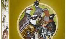 Quiko - Bob 1 kg(pokarm dla młodych bażantów, przepiórek, itp)
