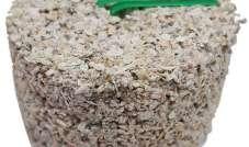 Witte Molen - Kamień mineralny Mini 100 g