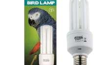 Świetlówka Arcadia Bird E27 20W (Żarówka)