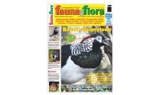 Fauna & Flora Styczeń 2019 (240)