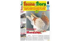 Fauna & Flora 03/2019 Marzec (242)