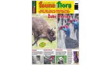 Fauna & Flora 02/2021 - Luty (265)