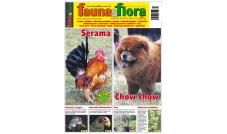 Fauna & Flora 03/2021 - Marzec (266)